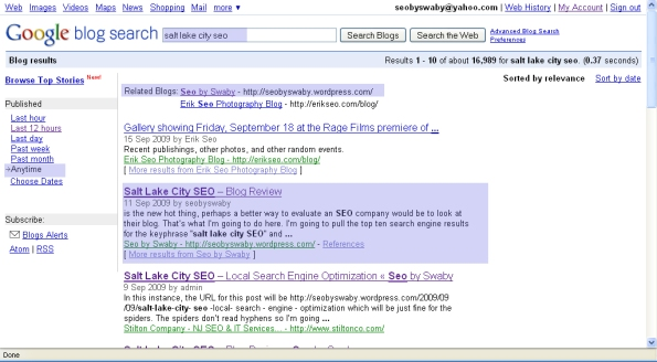 salt lake city seo blog results